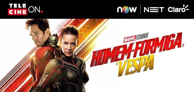 Entenda como Homem-Formiga e a Vespa se conecta com Vingadores 4