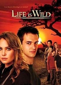 Life Is Wild (1ª Temporada)  - Poster / Capa / Cartaz - Oficial 1