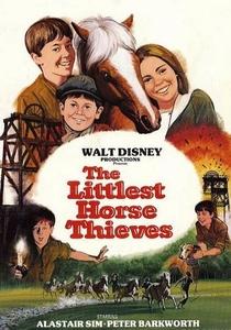 O Pequeno Ladrão de Cavalos - Poster / Capa / Cartaz - Oficial 4