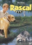 Rascal (Rascal)