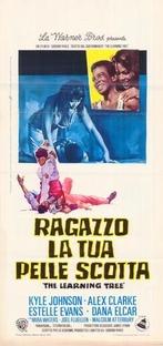 Com o Terror na Alma - Poster / Capa / Cartaz - Oficial 2