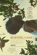 Burning Cane (Burning Cane)