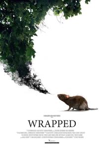 Wrapped - Poster / Capa / Cartaz - Oficial 1