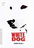 Cão Branco (White Dog)