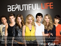 The Beautiful Life (1ª Temporada) - Poster / Capa / Cartaz - Oficial 3