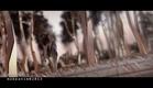 Zoltan Szalay animation reel 2013