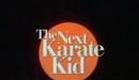 The Next Karate Kid (1994) Film Trailer