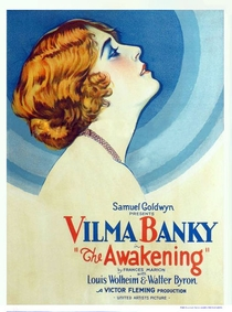 O Despertar - Poster / Capa / Cartaz - Oficial 1