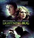 Lightning Bug (Lightning Bug)