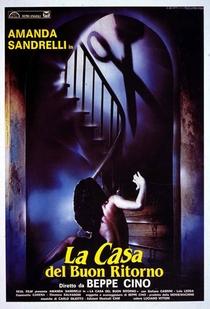 The House of the Blue Shadows - Poster / Capa / Cartaz - Oficial 1