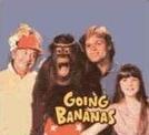 Miss Banana (Going Bananas)