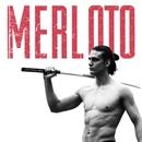 Henrique Merloto