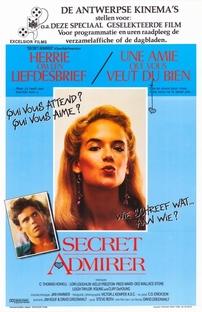 Admiradora Secreta - Poster / Capa / Cartaz - Oficial 5