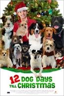 12 Dias de Cão (12 Dog Days Till Christmas)