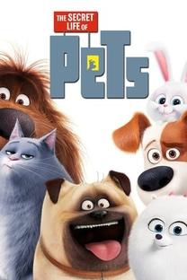Pets: A Vida Secreta dos Bichos - Poster / Capa / Cartaz - Oficial 13