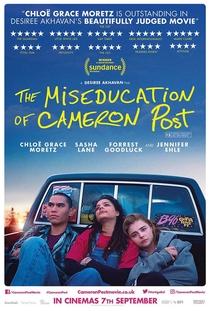 O Mau Exemplo de Cameron Post - Poster / Capa / Cartaz - Oficial 4