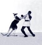 Das boxende Känguruh (Das boxende Känguruh)