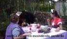 Alice in wonderland [OFFICIAL] - Castelo version - part 1