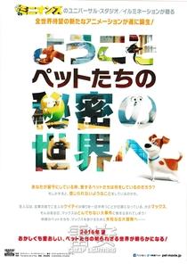 Pets: A Vida Secreta dos Bichos - Poster / Capa / Cartaz - Oficial 12