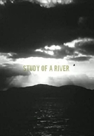 Estudo de um Rio