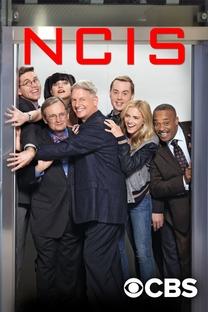 NCIS: Investigações Criminais (15ª Temporada) - Poster / Capa / Cartaz - Oficial 2