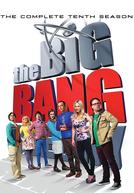 Big Bang: A Teoria (10ª Temporada) (The Big Bang Theory (Season 10))