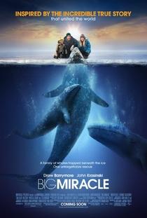 O Grande Milagre - Poster / Capa / Cartaz - Oficial 2
