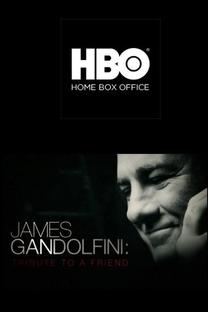 James Gandolfini: Tribute to a Friend - Poster / Capa / Cartaz - Oficial 1