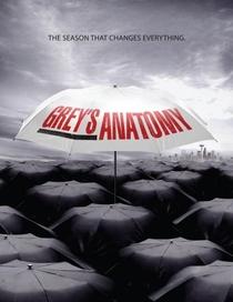 Grey's Anatomy (8ª Temporada) - Poster / Capa / Cartaz - Oficial 6