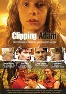 Clipping Adam (Clipping Adam)