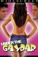 Under the Gaydar (Under the Gaydar)