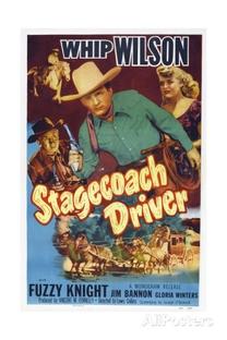 Stagecoach Driver - Poster / Capa / Cartaz - Oficial 1