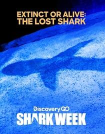O Tubarão Perdido - Poster / Capa / Cartaz - Oficial 1