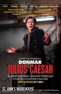 Julius Caesar (Julius Caesar)