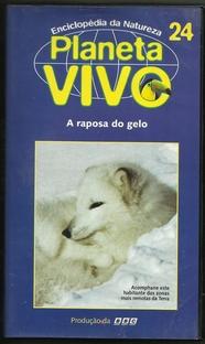 Planeta Vivo - A Raposa do Gelo - Poster / Capa / Cartaz - Oficial 1