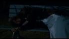 D'Une Rive A L'Autre trailer -  www.lynnekamm.com