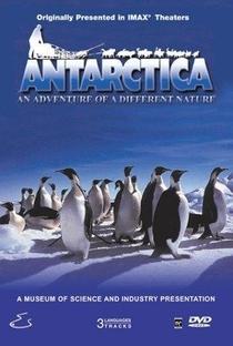 Antarctica - Poster / Capa / Cartaz - Oficial 1