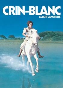 O Cavalo Branco - Poster / Capa / Cartaz - Oficial 3