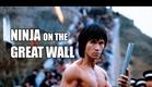 Wu Tang Collection: NINJA ON THE GREAT WALL