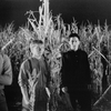 Colheita Maldita 2: O Sacrifício Final ( Children of the Corn II: The Final Sacrifice, David Price…