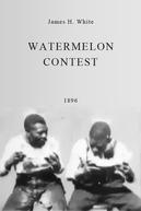 Watermelon Contest (Watermelon Contest)