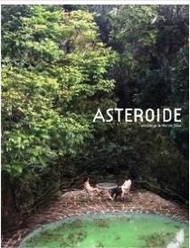 Asteroide - Poster / Capa / Cartaz - Oficial 1