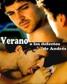 Verão ou os Defeitos de André (Verano o Los defectos de Andrés)