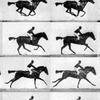 Sallie Gardner at a Gallop (1878) - Crítica
