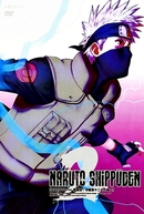 Naruto Shippuden (3ª Temporada)
