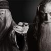 Dumbledore convidou o Gandalf para dar aula em Hogwarts | Caco na Cuca