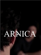 Arnica (Arnica)