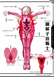 Uterus Man - Poster / Capa / Cartaz - Oficial 3