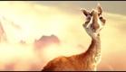 """""""Caminandes: Llama Drama"""" by Pablo Vazquez (Disney Favorite)"""