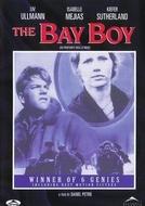 Quando Chega o Amor (The Bay Boy)